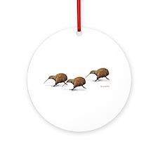 Kiwi Race Ornament (Round)