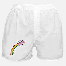 Flying Pig Rainbow Boxer Shorts