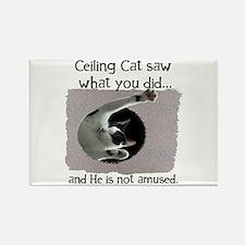 Ceiling Cat Rectangle Magnet
