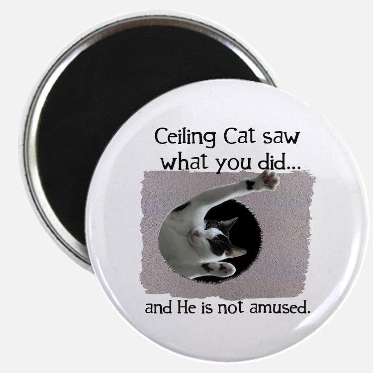 Ceiling Cat Magnet