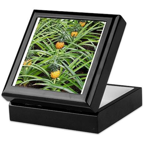 Tiny Pineapples All in a Row Keepsake Box