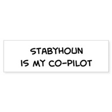 Co-pilot: Stabyhoun Bumper Bumper Sticker