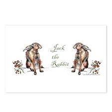 Jack the Rabbit - Jack Rabbit Postcards (Package o
