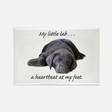 Chocolate Lab Heartbeat Rectangle Magnet