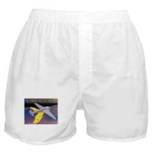 Vintage Florida Boxer Shorts