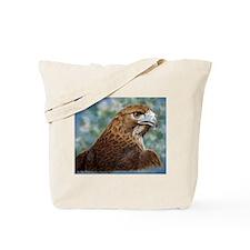 Red-tail Hawk Tote Bag