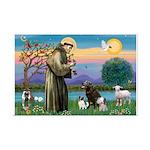 St Francis/3 dogs Mini Poster Print