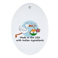 Stork Baby India USA Oval Ornament