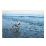 Out to Sea Postcards (Package of 8)