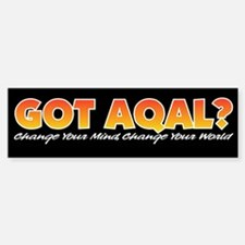 AQAL Bumper Bumper Bumper Sticker