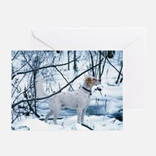 Rembrandt Greeting Cards (Pk of 10)