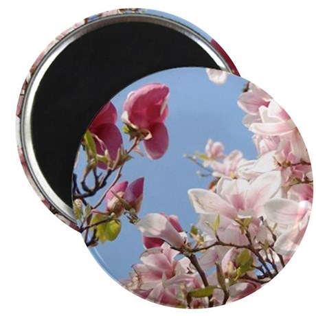 "Japanese Magnolias 2.25"" Magnet (10 pack)"