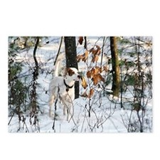 Setter Watercolour Postcards (Package of 8)