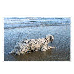 Setting Waves Postcards (Package of 8)