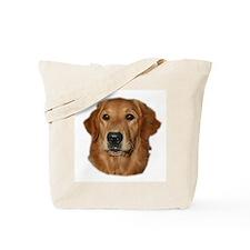 Head Study Golden Retriever Tote Bag
