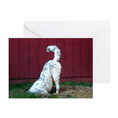 Lucky Butt Greeting Cards (Pk of 10)