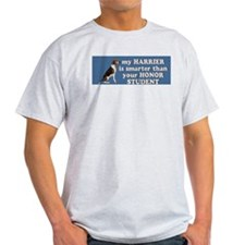 Smart Harrier Ash Grey T-Shirt