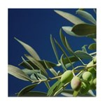 Wine Country Gifts Olives Tile Coaster