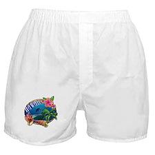 Surf Hawaii Boxer Shorts