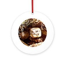 Tortoise Ornament (Round)