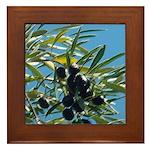 Wine Country Olives Framed Tile