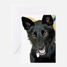 Belgian Shepherd Greeting Card