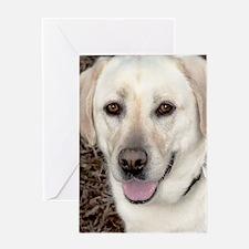 White Labrador Retriever Greeting Card