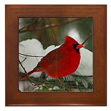 Snowy Cardinal Framed Tile