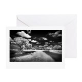Photography roads Greeting Cards