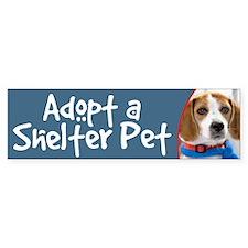 Adopt a Shelter Pet bumper sticker - beagle