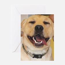 Yellow Lab Photo Greeting Card