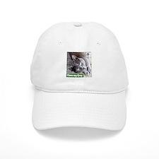 Grey Cat Baseball Cap