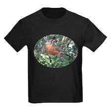 Cute Robin redbreast T