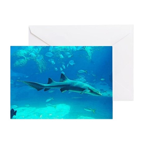 Shark on the Reef Greeting Card