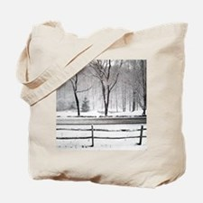 Winter Road and Pond Tote Bag