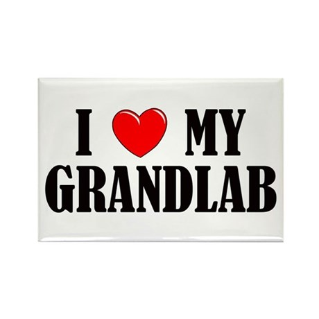 I Love My Grandlab Rectangle Magnet