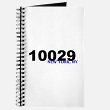 10029 Journal