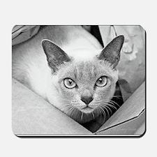 Kuki-Cat Mousepad