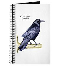 Common Raven Journal
