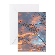 Baby Pink & Blue Greeting Card