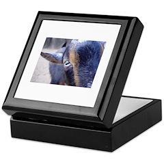 Goat! Keepsake Box