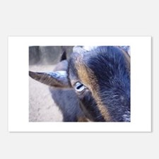 Goat! Postcards (Package of 8)
