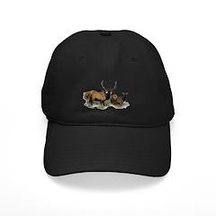 Bull elk Baseball Hat
