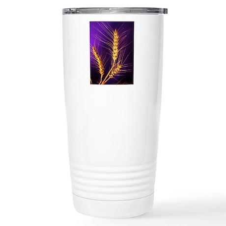 Kansas Wheat Stainless Steel Travel Mug