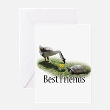 Unique Turtle valentine%27s day Greeting Card