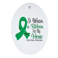 Hero - Liver Cancer Oval Ornament