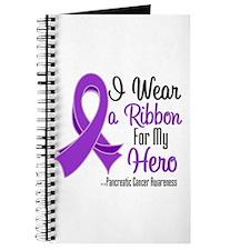 Hero - Pancreatic Cancer Journal