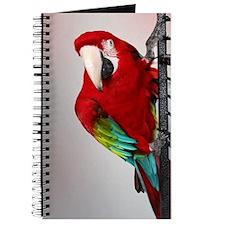 Greenwing Macaw Journal