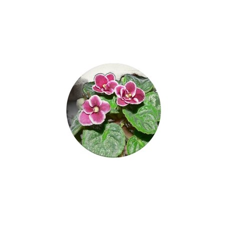 African Violet in the Sunshine Mini Button