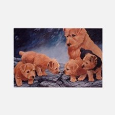 Norfolk Terriers Rectangle Magnet